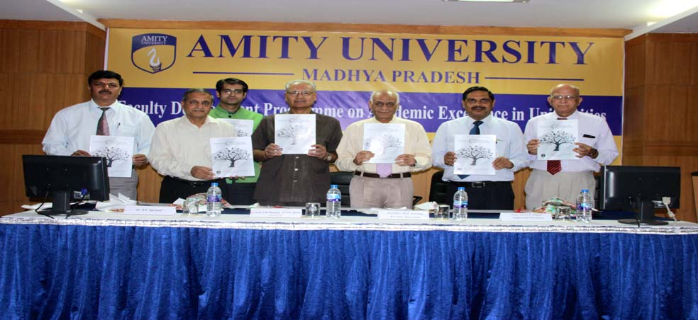Amity University Madhya Pradesh Organizes Faculty Development Programme on Academic Excel